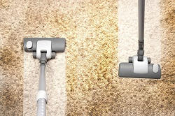 twickenham carpet steam cleaners tw2